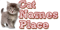 Cat Names Place Logo
